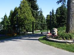 Wrought Iron Electric Driveway Gate in Caledon.